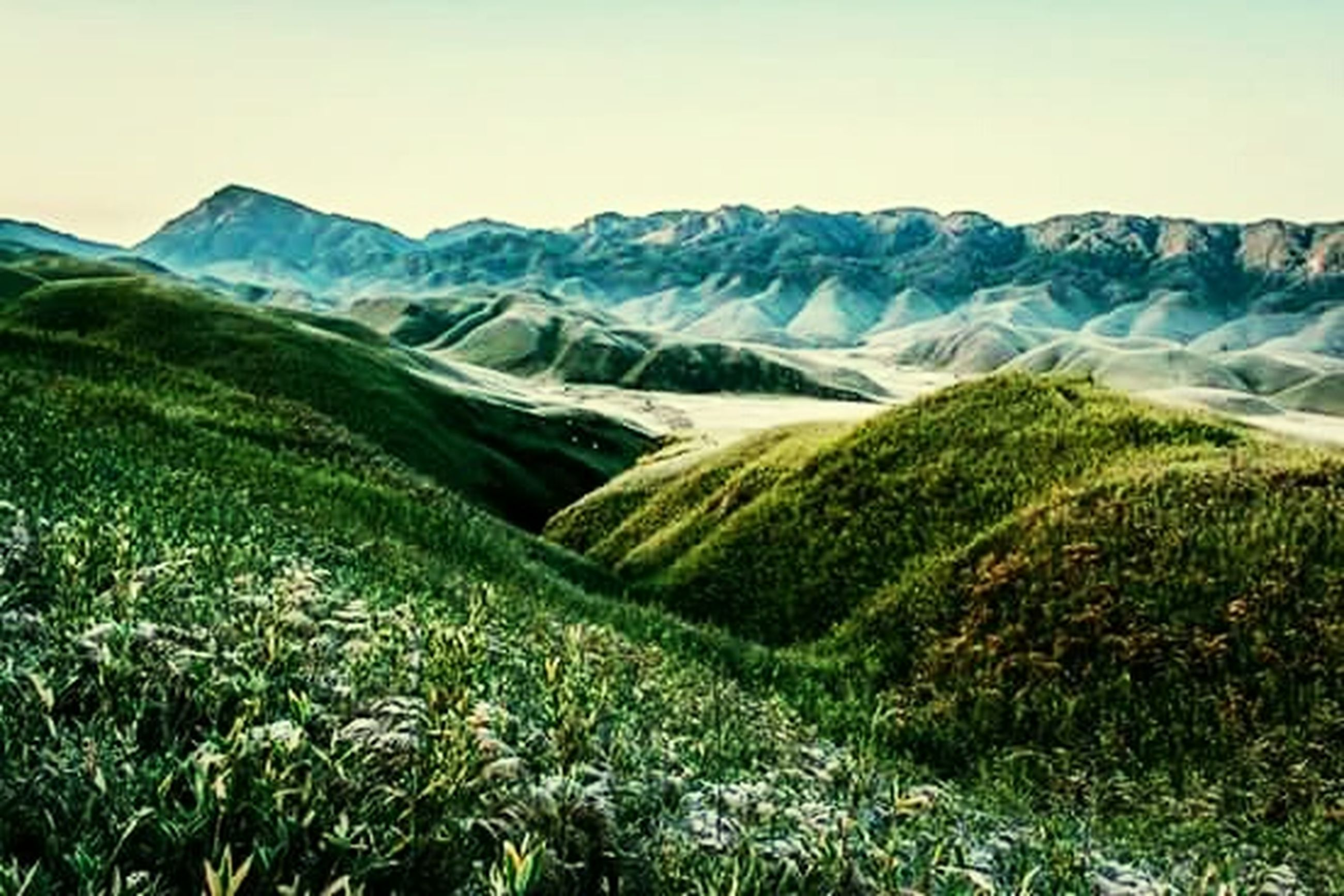 landscape, mountain, rural scene, green color, nature, scenics, landscaped, agriculture, summer, mountain range, clear sky, grass, outdoors, plant, no people, beauty in nature, day, sky, freshness