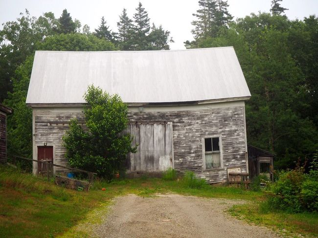 Deer Isle, Maine Foggy Deer Isle Barn Architecture Built Structure Building Exterior Plant Building Tree House No People Old Rural Scene