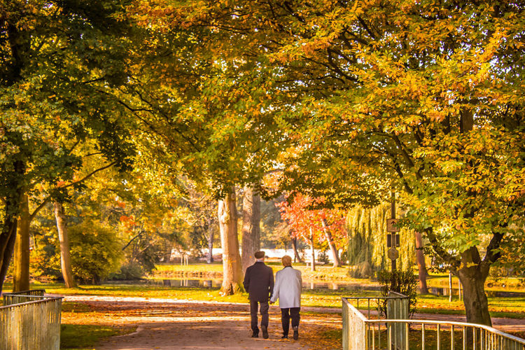 Rear view of man and woman walking in park