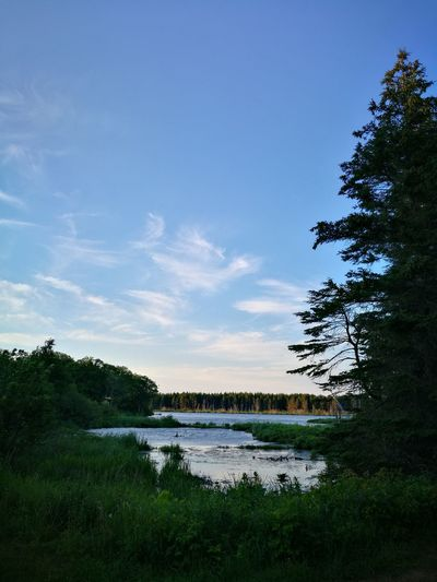 Becoming Anne of Green Gables Anne Of Green Gables Cavendish Prince Edward Island Canada Sunset Summer Leicagraphy Leicaexplorer HuaweiP9 Shining Water Skyline Beauty In Nature Lake Water Nature Tree Cloud - Sky Beauty In Nature Tranquility