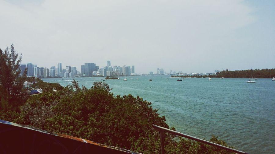 Ocean View Love Miami