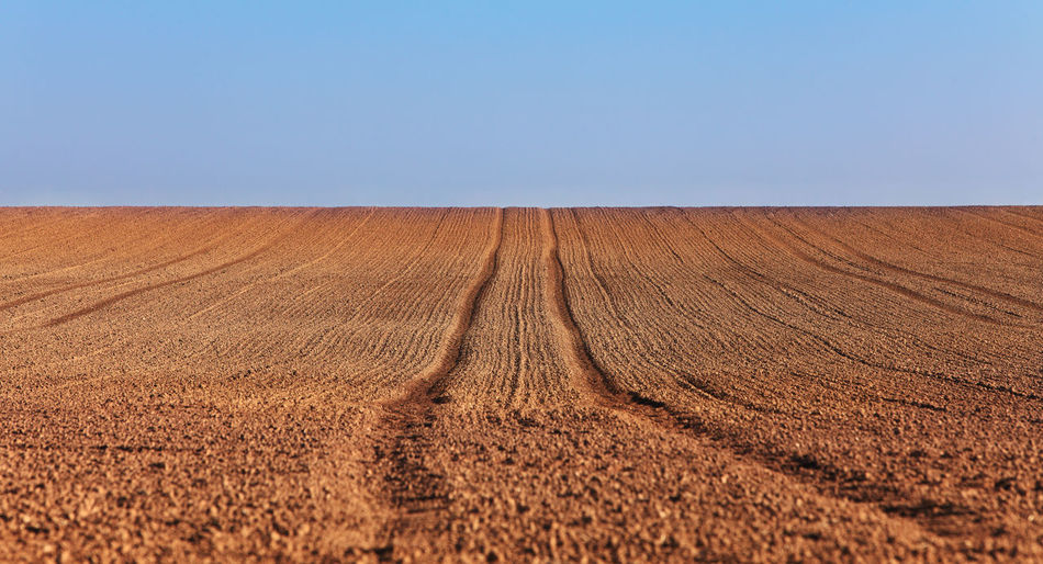 Tractor traks in the field. Earth Perspective Agriculture Backgrounds Blue Brown Clear Sky Dirt Environment Field Horizon Over Land Landscape Nature Nature_collection No People Outdoors Rural Scene Scenics Tracks Tractor Tracks Perspectives On Nature
