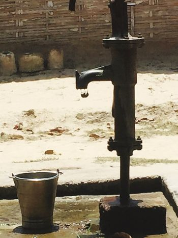 A Small Bird trying to Drink Water in Shallow Water Tube Well Save Water Save Life