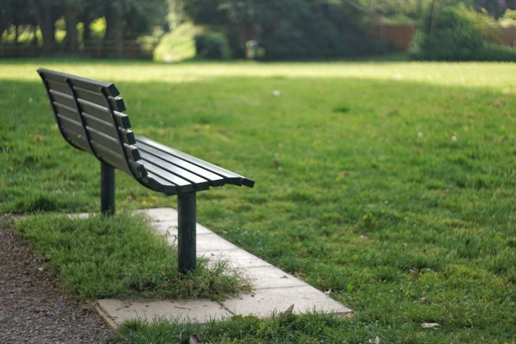Seat Park - Man Made Space Grass Green Color Park Bench Grass Area Park Field Bench Grassland Empty Countryside Growing Absence Blooming Path British Culture