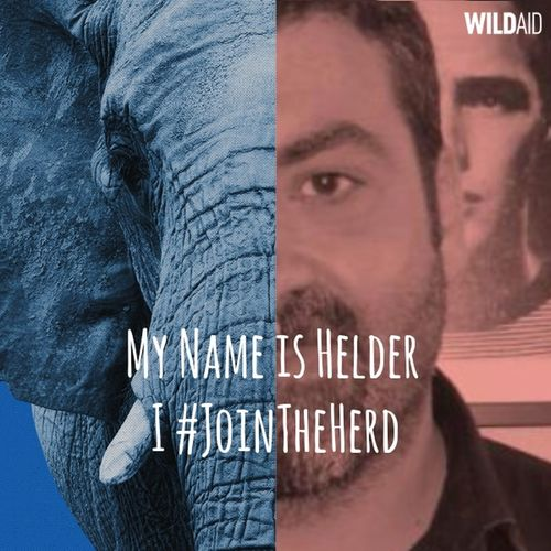 https://yearoftheelephant.org/ #JOINTHEHERD (\ˈjȯin thə ˈhərd\) noun: A global movement to celebrate and protect elephants and rhinos. We are committed to ending the trade in ivory and rhino horn. Join us. Activist  Communication Elephant Help Save Wildlife Https://yearoftheelephant.org/ Information Join The Herd JoinTheHerd Protect Animals Protect Nature Protect Our Wild Life Rhino Text Wildlife Wildlife & Nature
