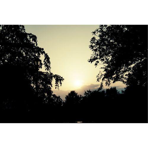 我看见夕阳下的奔跑,那是我们逝去的青春。