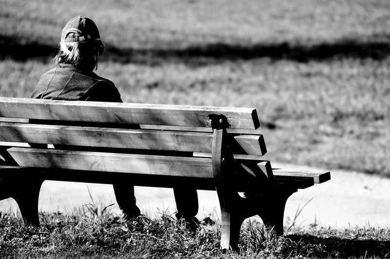 Rear View Of Man Sitting On Wooden Bench At Park