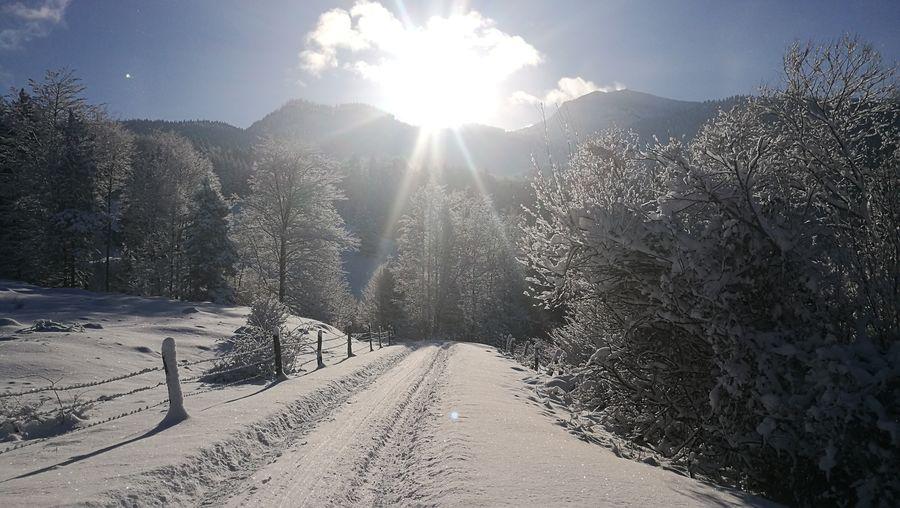 Nature Sunlight Sky Cold Temperature Beauty In Nature Frozen 3XSPUnitySunset Allgäu Alps Idyllic Scenery Outdoors Snow