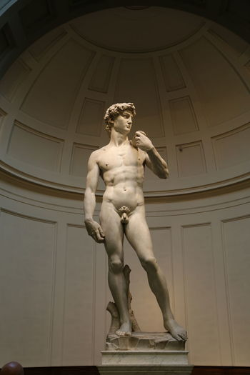 David Florence Italy Accademia Architecture Art And Craft Day Human Representation Indoors  Low Angle View Male Likeness Michelangelo's David Museum No People Renaissance Sculpture Statue