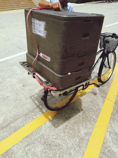 Transportation Road Bicycle Job Life