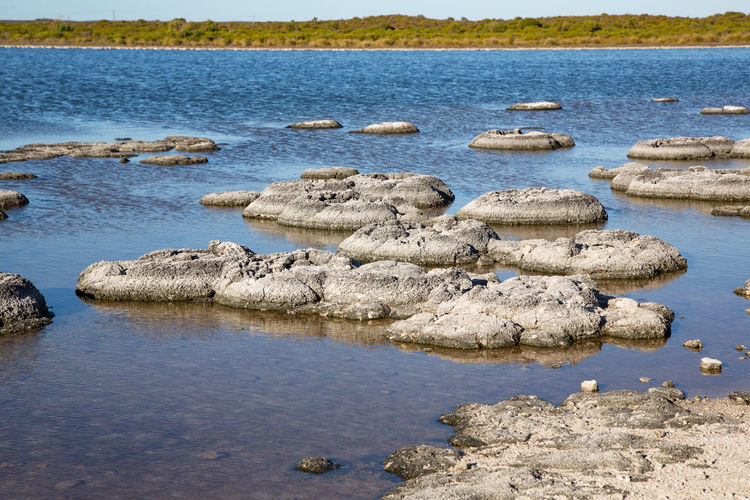 Rocks in sea at beach