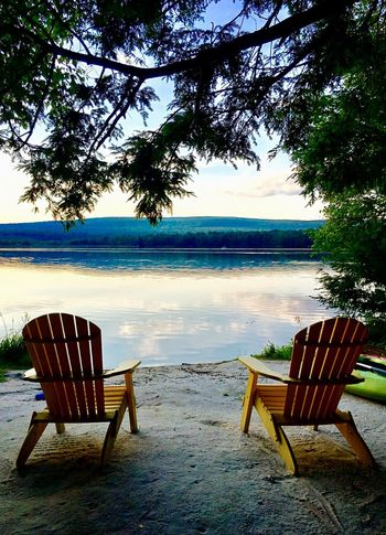 Empty Tree Absence Sea Water Bench Ocean Chair Horizon Over Water Tranquil Scene Tranquility Calm Cloud Seat Tree Trunk Sky Group Of Objects Branch Blue Nature Outdoors Calm Relaxing Relax
