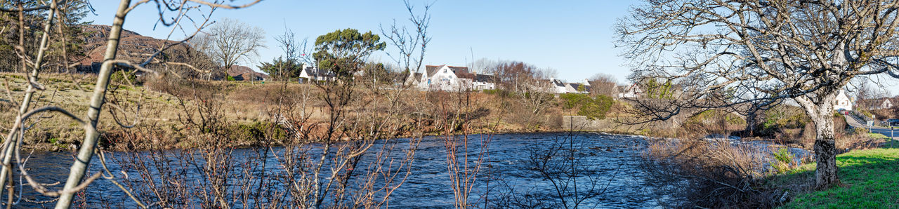 Photo Merge Photography River Ewe And Poolewe Bridge Scotland 💕 Bare Tree Blue Clear Sky Day Grass Nature No People Outdoors Plant Sky Tree Growth Tranquility Beauty In Nature Branch Scenics