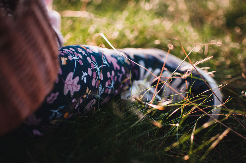 Midsection of woman lying on field