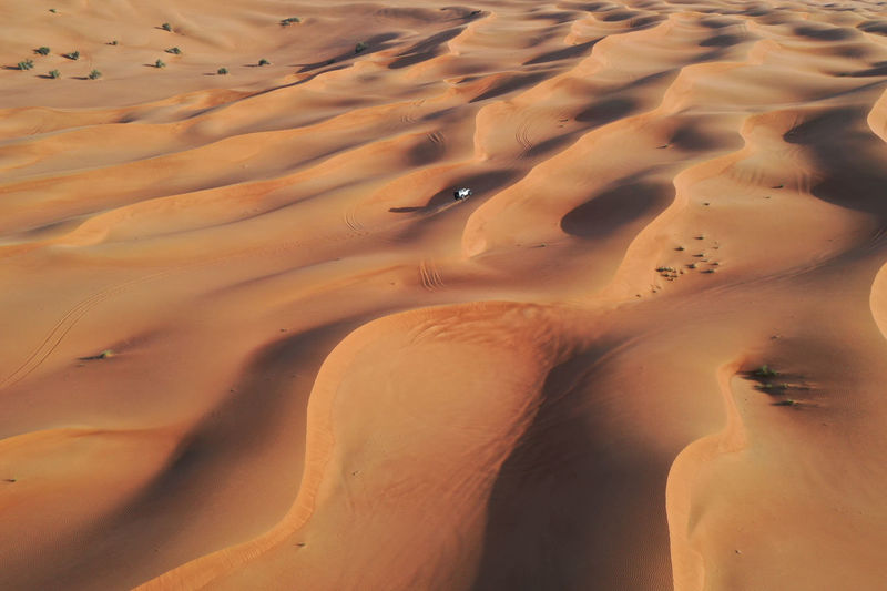 White car driving through the sand dunes. off-road in the united arab emirates.