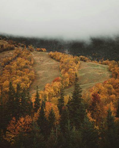 Dusk in Franconia New Hampshire // Fall Foliage New England Foliage Mountains Fog