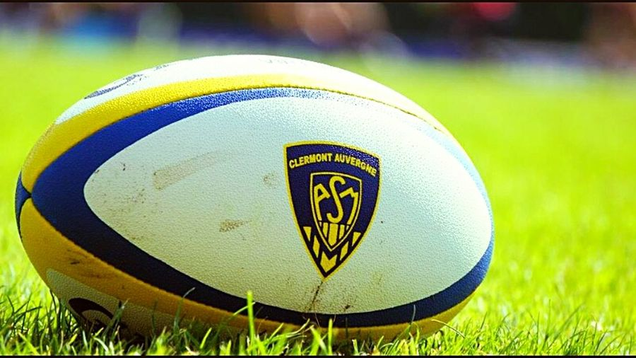 Rugby Yellow Army ASM Supporter Clermont-ferrand 🏉