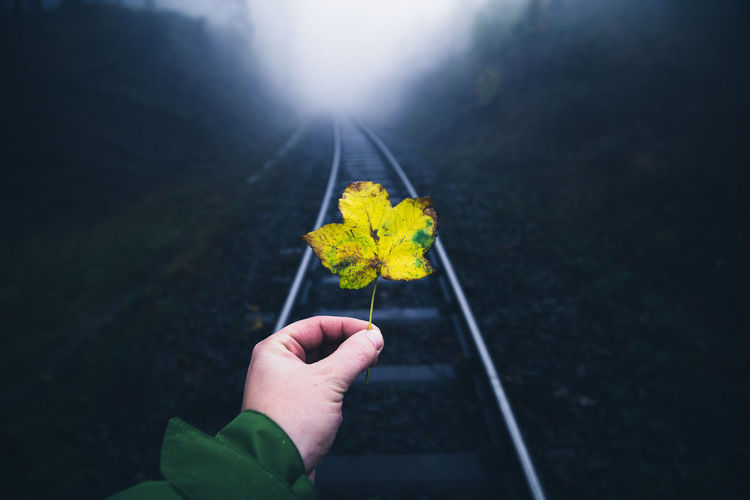 Close-up of person holding maple leaf against railroad track
