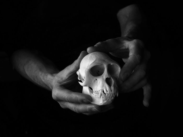 familia sumus...... Self Portrait Family Ties Life Black And White Photography Black And White Chiaroscuro  Skull Bone  darkness and light Primate Anthropology Simian Reflections Close Up Monkey Skull Human Hand Hand Black Background Holding Dark