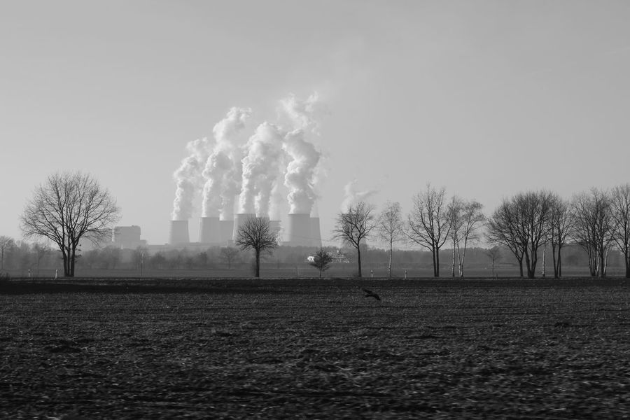 Power Station Kraftwerk Jänschwalde Black And White Bare Tree Nature Day No People Outdoors Steam