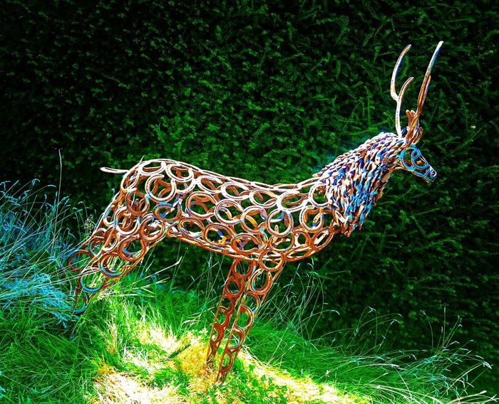 Steelwork Metal Metalwork Metal Sculpture Metal Art Metal Artwork Garden Garden Photography Creativity Beauty In Nature Horseshoe Mobilephotography Me, My Camera And I Capture The Moment Natural Beauty Vibrant Colours Outdoor Photography PhonePhotography Nature_collection Metal Animals