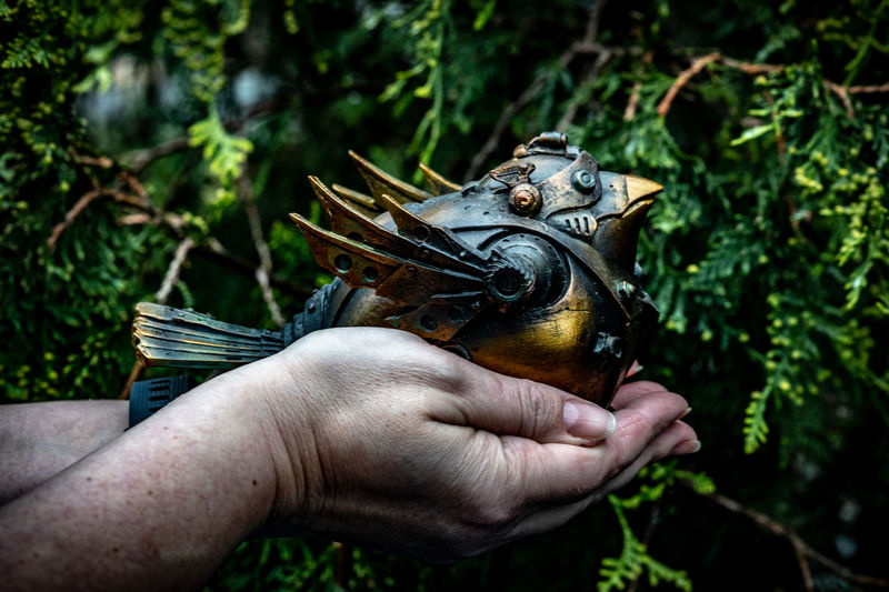 Human Hand Hand Human Body Part Holding One Person Real People Focus On Foreground Unrecognizable Person Day Plant Close-up Lifestyles Nature Body Part Personal Perspective Outdoors Animal Wildlife Finger Human Limb Steampunk Bird