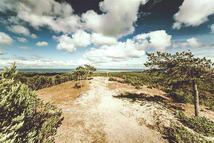 Sand Dunes Vecekrugo Neringa Open Edit Landscape Hanging Out Traveling Lithuania Nature