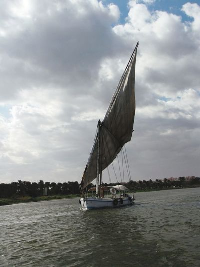 Rivernile NileRiver Beauty In Nature Boat Sailing! Egypt Cairo Outdoors Palmtree History