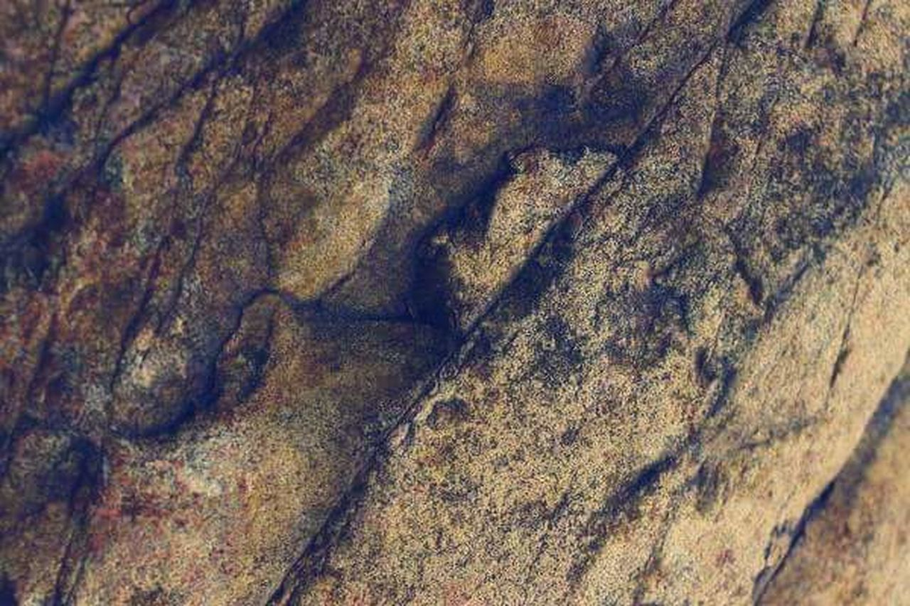 textured, day, rough, nature, no people, close-up, outdoors, backgrounds, full frame, pattern