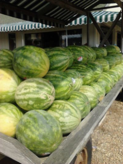 Beach Bound  Road Trippin It! Farm Markets Coastal Carolina