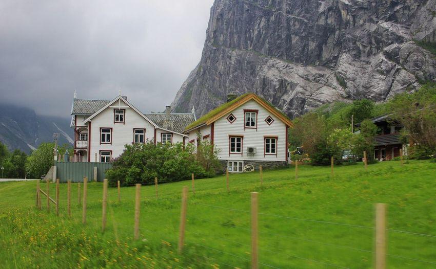 Norwegian EyeEm