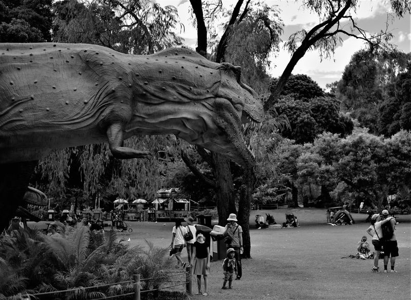 Feeding at the zoo Animal Themes Statue Sculpture Large Group Of People Outdoors Leisure Activity Taking Photos Enjoying Life Relaxing