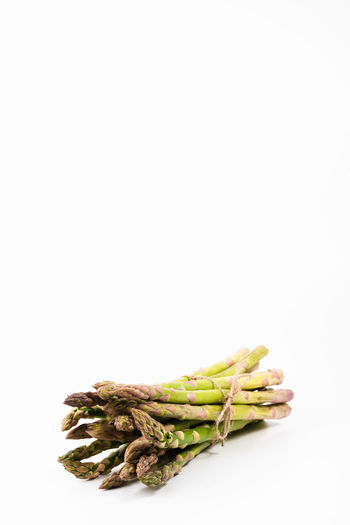 bunch of green asparagus on a white background   food photography Studio Shot White Background Food And Drink Copy Space Still Life Food Indoors  Healthy Eating Freshness No People Vegetable Raw Food Asparagus Close-up Green Asparagus Food Photography Foodphotography Group Of Objects Green Color Organic Bunch