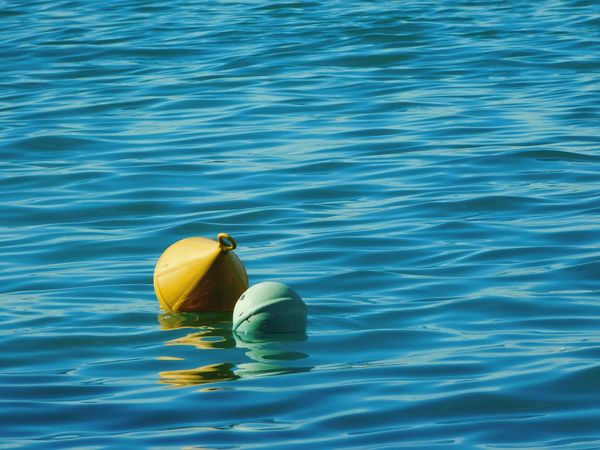 Buoy Water Waterfront Swimming No People Blue Sea Outdoors The Great Outdoors - 2018 EyeEm Awards