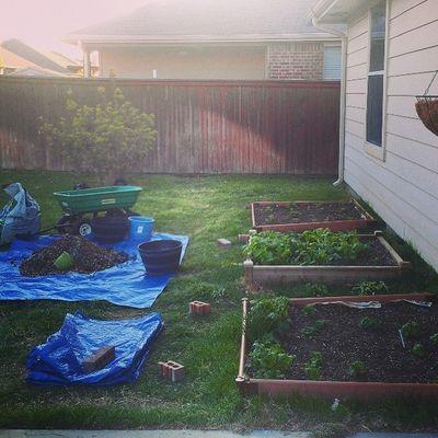 Gardening Square -foot Spring2014