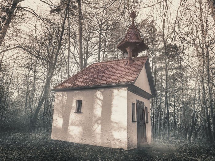 Romantic chapel in the woods Chapel Church Franken Romantic Steigerwald Wedding Architecture Bare Tree Branch Building Exterior Built Structure Day Forest Frankonia Germany Nature No People Outdoors Religion Sky Tree Woods