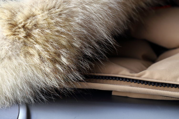 Fur collar on suitcase. Baggage Brown Close-up Coat Cosy Detail Enjoying Life Travel Let's Go. Together. Lieblingsteil EyeEm Nature Lover Fur Zipper Luxury Macro Mundane No People Ready Sand Color Soft Suitcase Traveling Elite Natural Pattern Snobbish