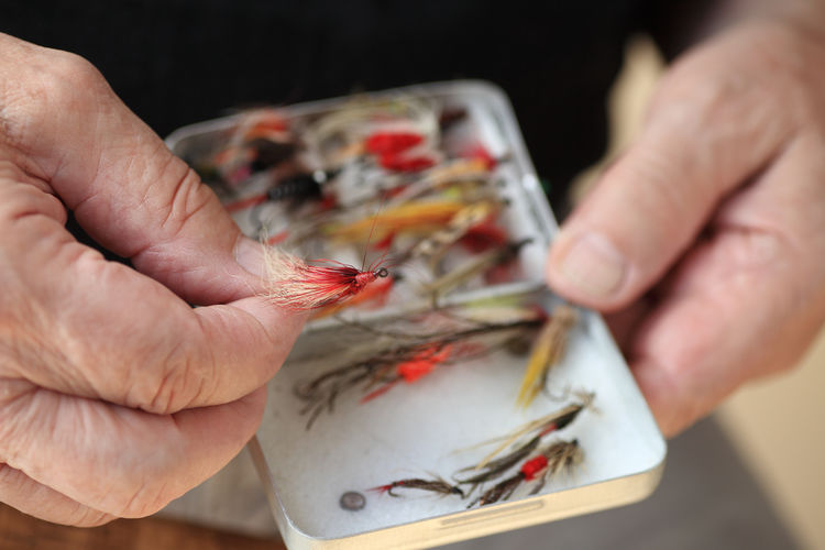 Man with his collection of artificial fishing flies Artificial Flies Assortment Box Closeup Collection Feathers Fingers Fish Hooks Fisherman Fishing Lures Hands Hobby Holding Individual Sport Leisure Activity Man Many One Person Organizing Overhead Fresh On Market 2016