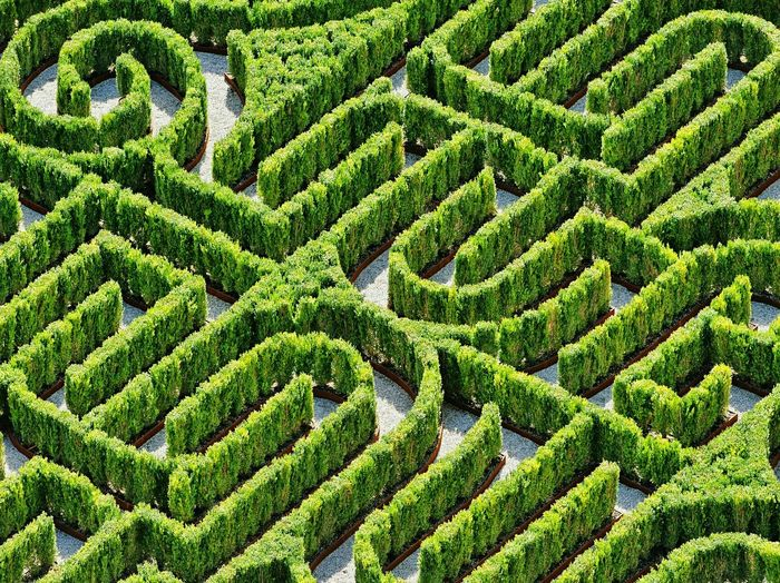High Angle View Of Plant Maze
