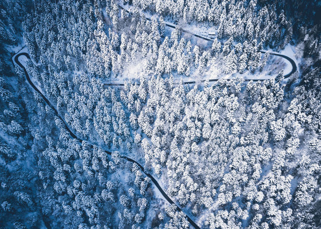 Getting up early, going out, breathing fresh winter air. It's all worth it! Aerial Shot Drohnenbild From Above  Ice Luftbild Road Schnee Schwarzwald Winter Aerial View Black Forest Blau Blue Cold Drohne Eingeschneit Forest Kalt Luftaufnahme Sky Snow Snowed In Street Von Oben Wald Go Higher