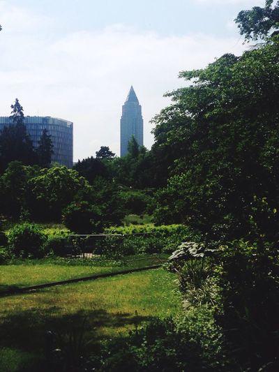 Skyscraper Park