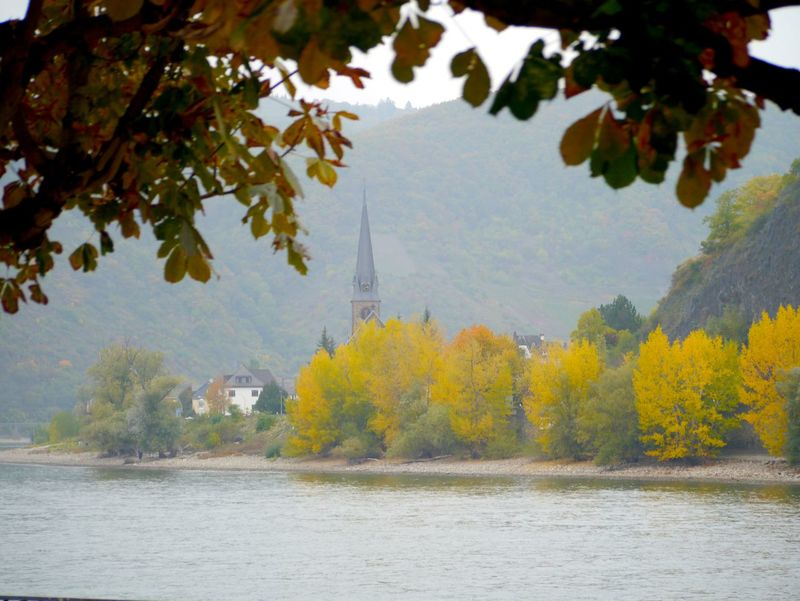 Autumn Beauty In Nature Boppard BoppardamRhein Change Day Growth Idyllic Middle Rhine Mountain Nature No People Outdoors Rhine Rhine River Scenics Season  Sky Tourism Tranquil Scene Tranquility Travel Destinations Tree Water