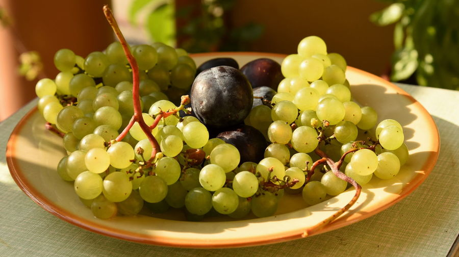 Polish Grapes and Plums Abundance Close-up Focus On Foreground Food Food And Drink Freshness Fruit Grape Grapes, Green Color Healthy Eating Heap Juicy Large Group Of Objects Organic Plums Polish Grapes, Polish Plums Ready-to-eat Ripe Selective Focus Vibrant Color