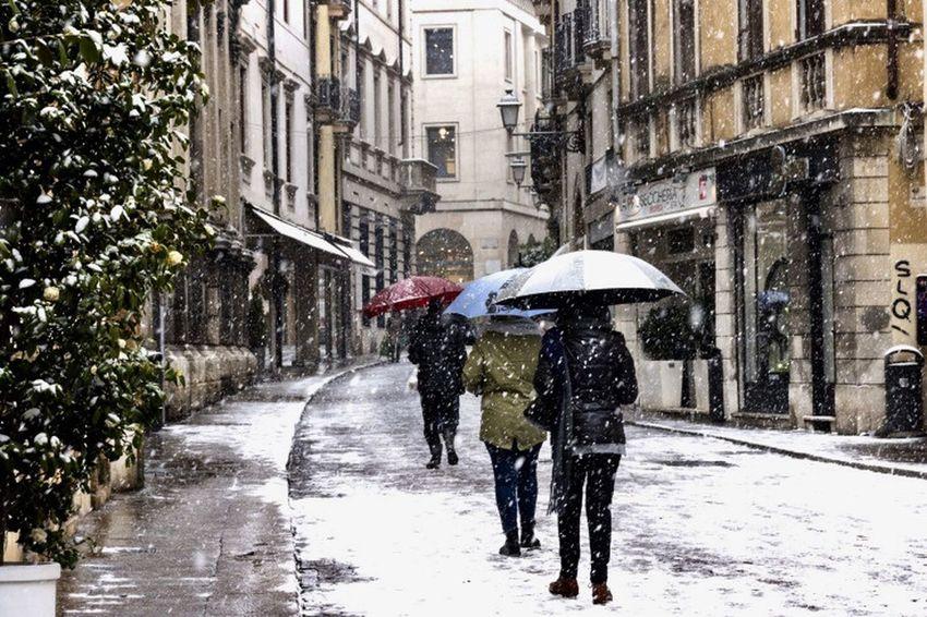 Rain Weather Wet Rainy Season Street Protection Outdoors
