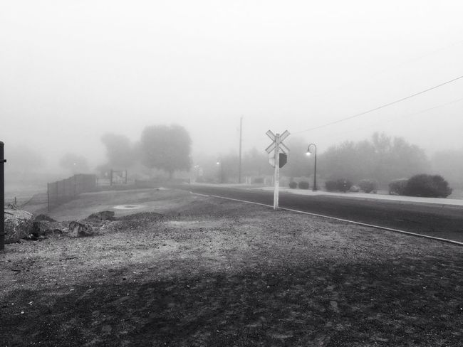 West Wetlands Park Entrance in black & white. Loving the Fog on my morning Walk. Just Me. Playing With Filters IPhone Photography Peace And Tranquility Foggy Road Fog Nature No People Day Plant Cold Temperature Winter Outdoors Beauty In Nature