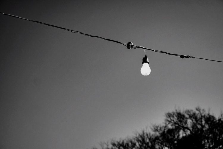 Hanging Electricity  Low Angle View Cable Lighting Equipment Light Bulb Connection No People Clear Sky Outdoors Day Tree Nature Sky Close-up Electric Light Japan