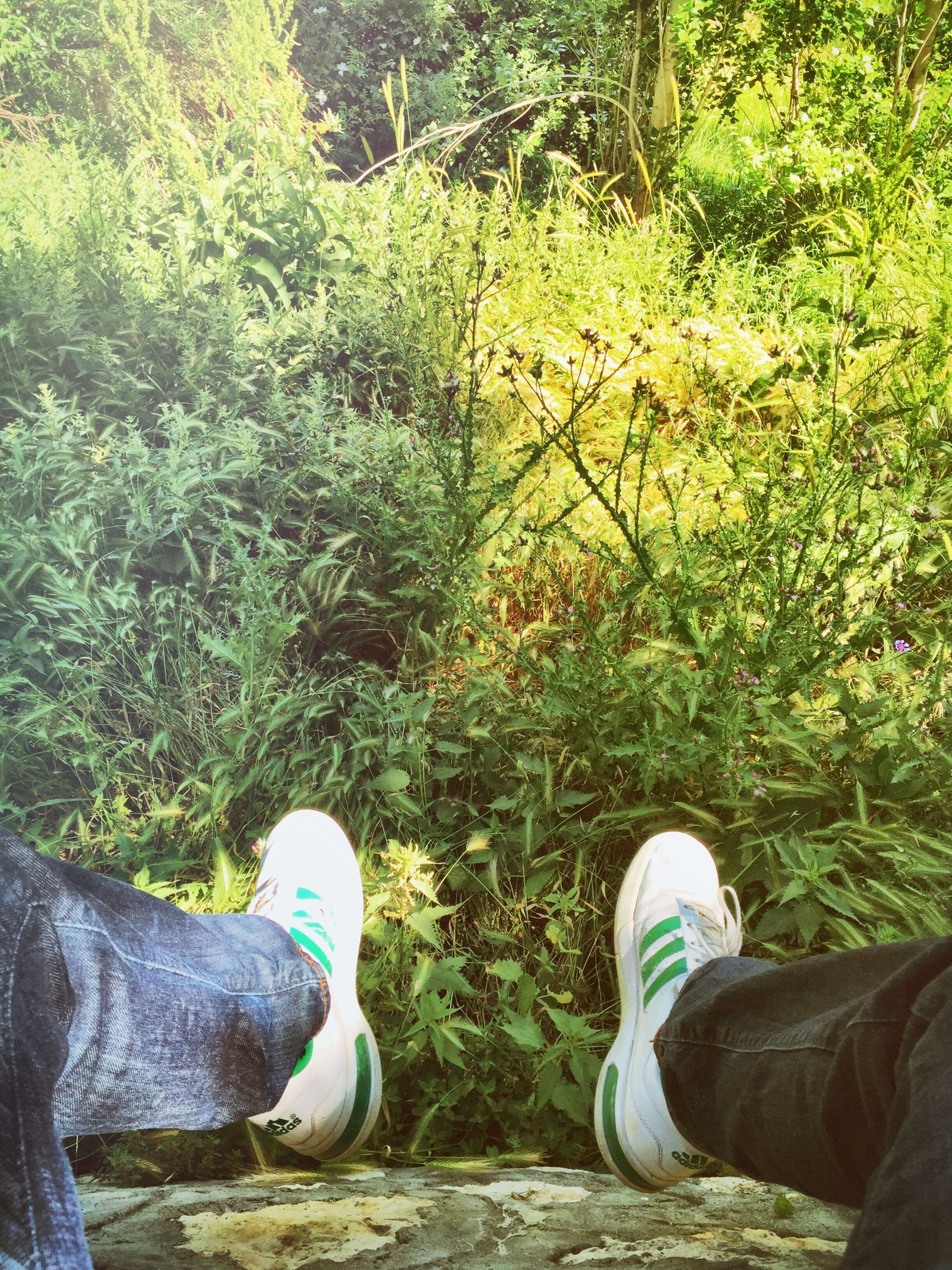 low section, person, shoe, personal perspective, lifestyles, grass, men, leisure activity, field, human foot, footwear, jeans, casual clothing, grassy, standing, relaxation, green color
