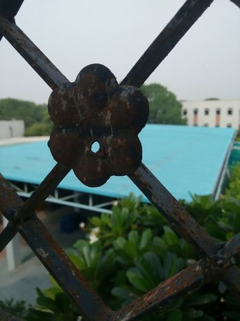 Rust Focus On Foreground Rainy Days College From My Point Of View Railing Rusty Rustic Paint Decay Delhiuniversity Early Morning EyeEm Gallery