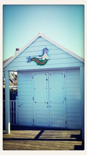 Ed's Dream Mermaid Being A Beach Bum