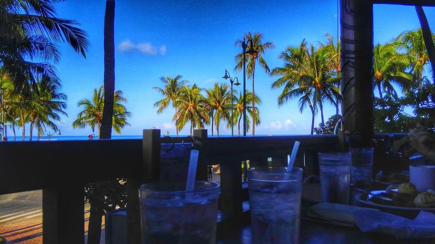 Breakfast BreakfastTime  Taking Photos Landscapephotography CaptureTheMoment Earth_Collections Landscape Photography Palmtrees Nature Sky Trees Summertime Honolulu, Hawaii Healing Powers Of Nature Aloha Eyeemphotography Eyem Gallery Beauty In Nature Relaxing Moments Enjoying The Moment EyeEmbestshots EyeEm Gallery Colors EyeEm Nature Lover Blue